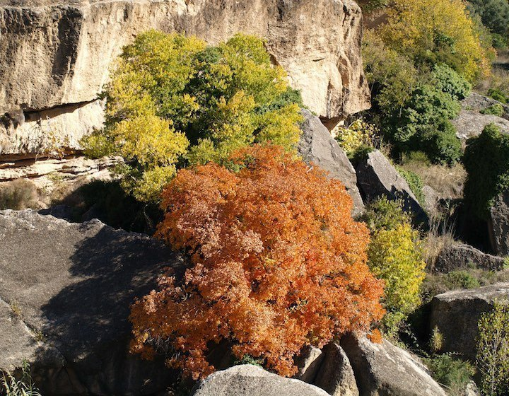 Visit Matarranya in Autumn, what to do